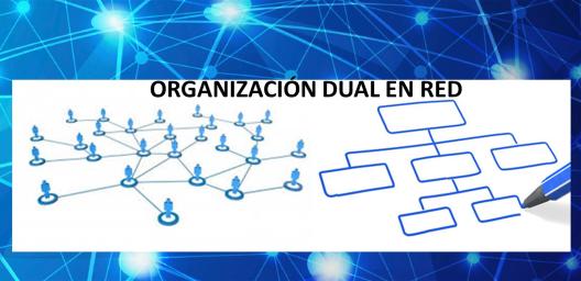 organizacion-dual-en-red